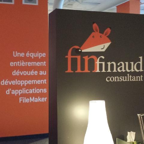 FinFinaud Consultant