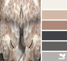Charte de couleurs 2